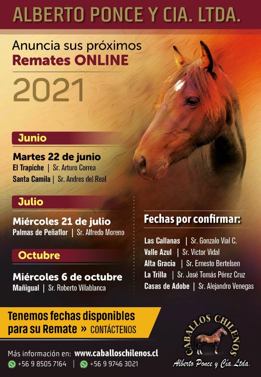 Retames_2021_Junio_Julio_Octubre